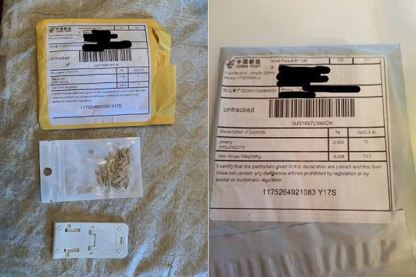 Maryland Seeds from China