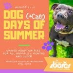 BARCS Waiving Adoption Fees 201908
