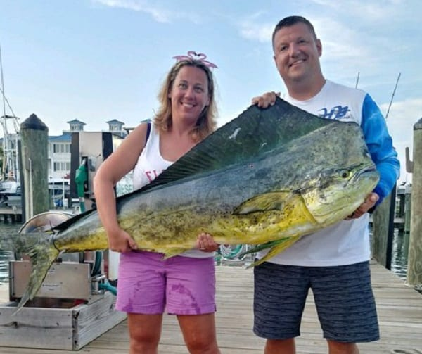 Maryland Dolphinfish Record 20190819