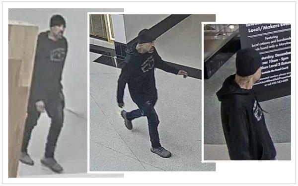 Towson Town Center Burglar 201909