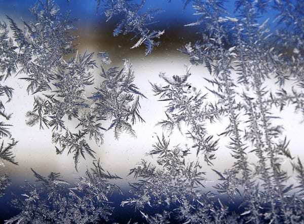 Frost Freeze Cold