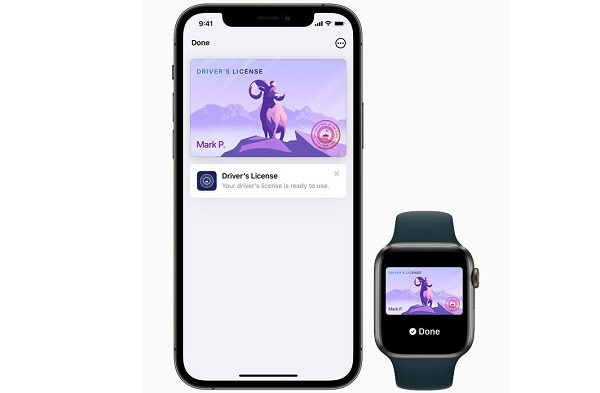 Apple iPhone State ID Drivers Livense Wallet